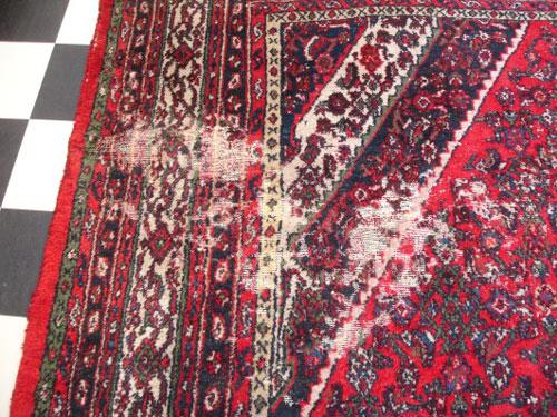 mole na dywanie